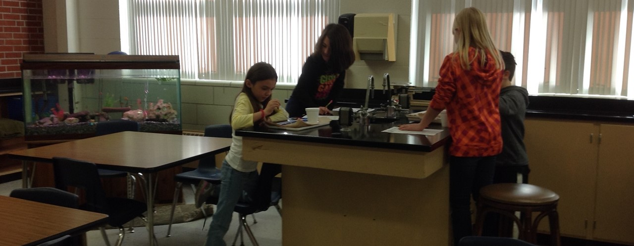 3rd Grade Studying Worms slideshow image